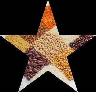 Foto ilustrativa de vários grãos